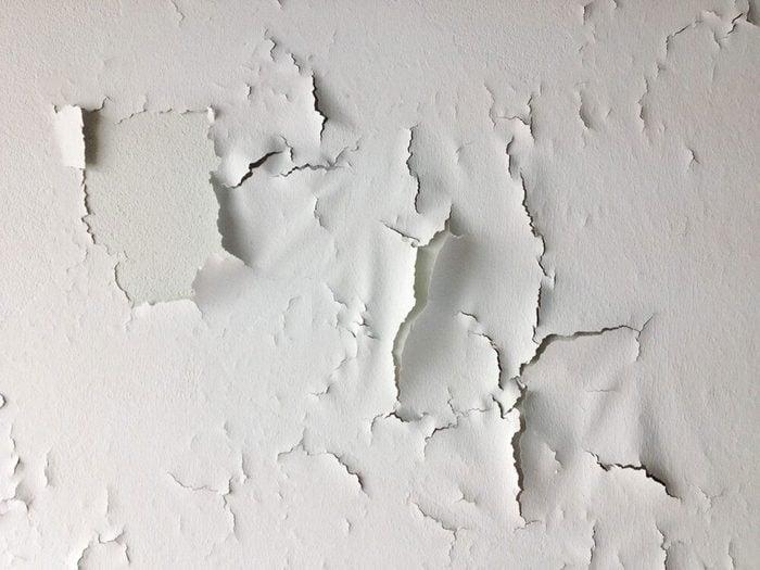 Les planchers fragiles et la peinture écaillée signifient que votre maison risque d'être infestée.