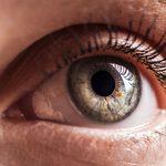 Cette tache grise dans l'oeil c'est… un ver