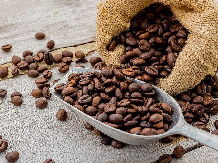 Attirer les vers de terre dans le jardin avec des grains de café.