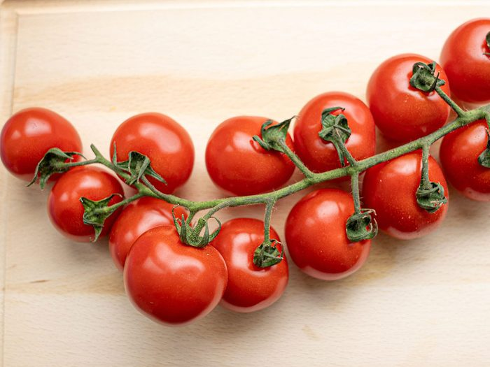 Les plants de tomates font partie des plantes qui sont toxiques pour les chats.