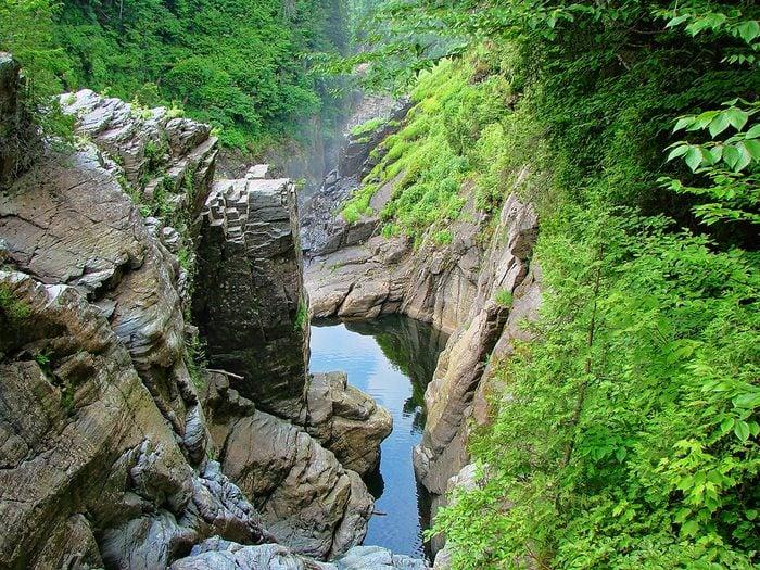Le site touristique du Canyon Sainte-Anne fait partie des plus beaux sentiers pédestres pour faire de la randonnée avec son chien.