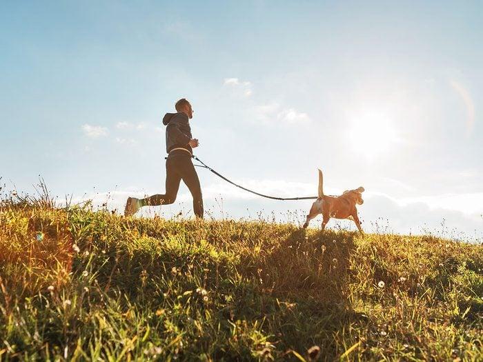 Le domaine Joly-De Lotbinière est l'un des plus beaux sentiers pédestres pour faire de la randonnée avec son chien.