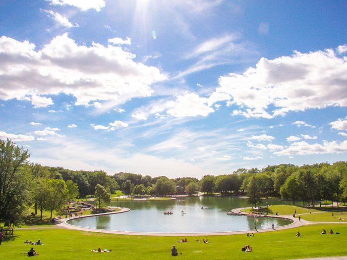 Le parc du Mont-Royal fait partie des plus beaux sentiers pédestres pour faire de la randonnée avec son chien.