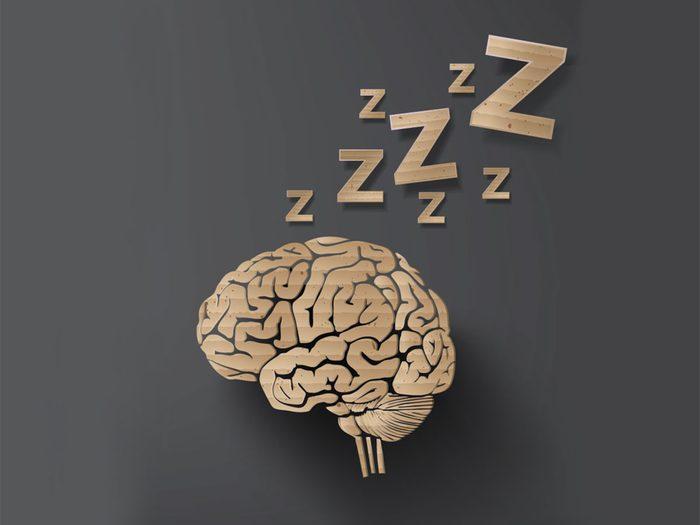 Le sommeil sert de maintenance nocturne pour régénérer son cerveau.