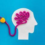Comment régénérer facilement son cerveau