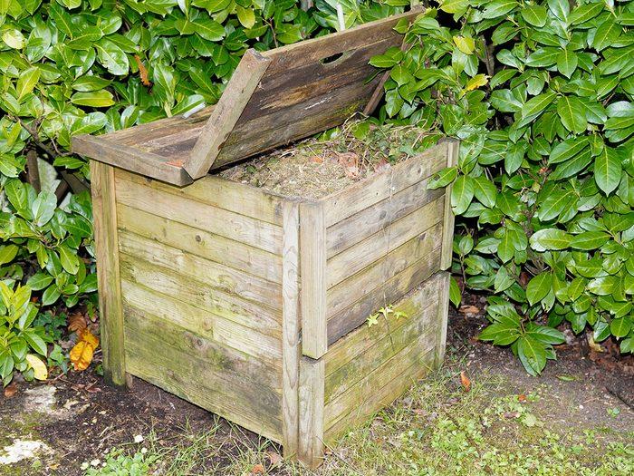 Couvrir le bac de composte pour se débarrasser des écureuils.