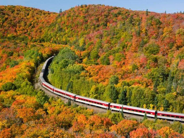 Faire un voyage en train à travers le Canada à bord du Agawa Canyon Tour Train.