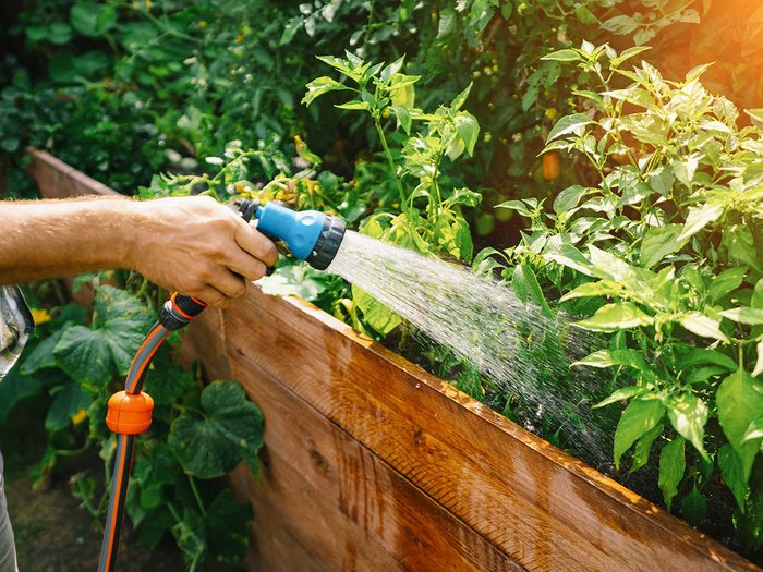 Utiliser l'eau au bon moment pour réduire sa consommation d'électricité en été.