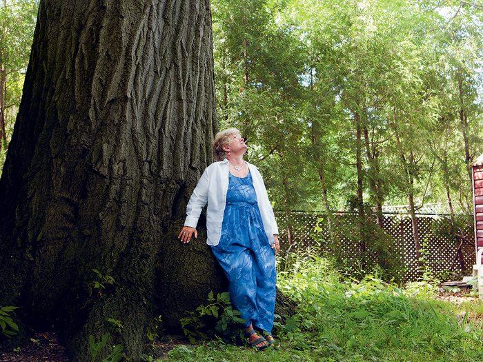 Générosité: elle sauve un arbre de 300 ans.