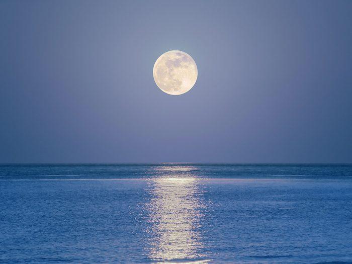 Perdu en mer, Brett observe la lune et les étoiles.