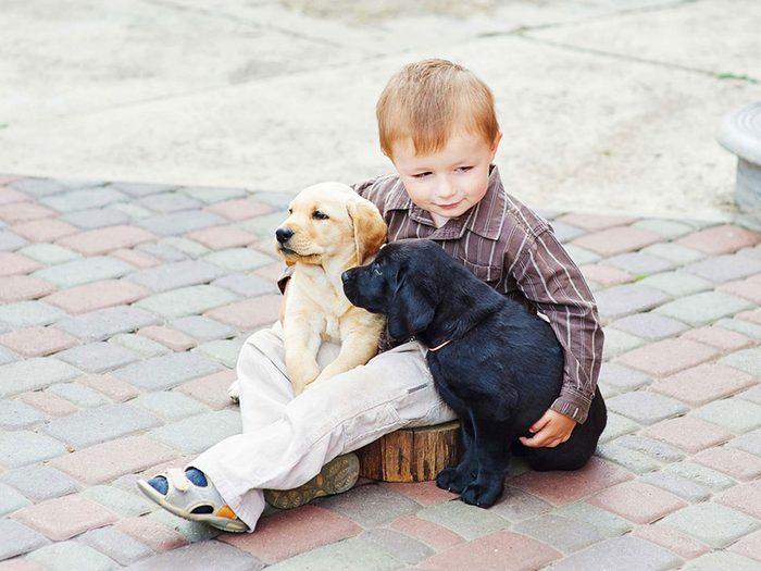 Adopter un chien de refuge c'est aussi savoir qu'il sera complètement différent des autres chiens.